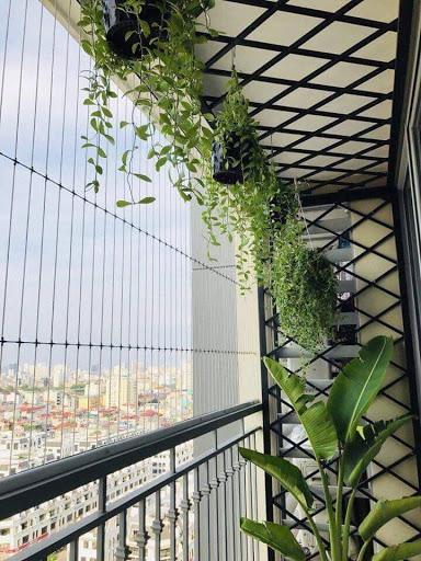 Lưới an toàn ban công nhà cao tầng
